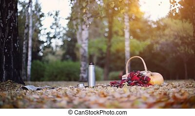 Scene of pumpkin, wicker baskets and plaid blanket on autumn leaves at sunset on sunshine background. 1920x1080