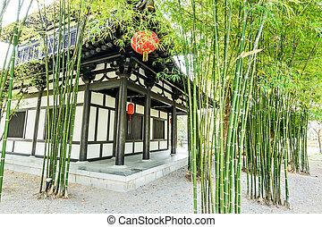 Scene of the chinese bamboo garden