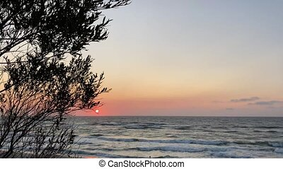 scene., paisible, coucher soleil, magnifique, baltique, sea.