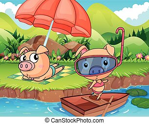 Two pigs enjoying at the bank of a river