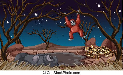 Scene with animals at night time