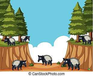 Scene with anteaters in the forest