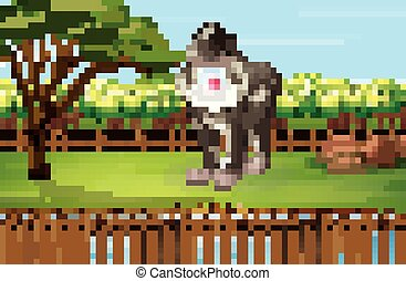 Scene with baboon in the zoo