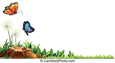 Scene with butterflies in the garden