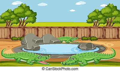 Scene with crocodile by the pond in the