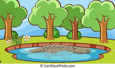 Scene with crocodile in the pond