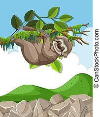 Scene with cute sloth hanging on the branch