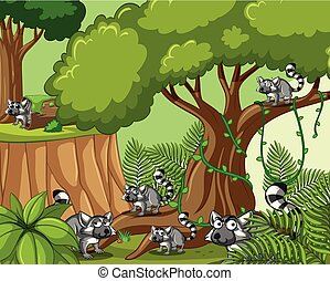 Scene with lemurs in forest