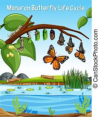 Scene with Monarch Butterfly Life Cycle
