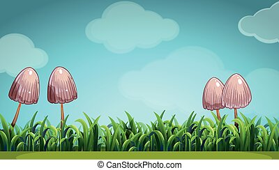 Scene with mushroom in the field