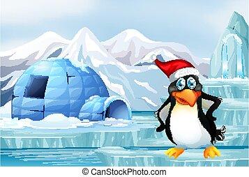 Scene with penguin on ice