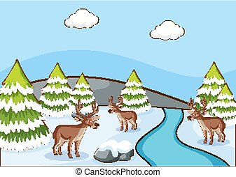 Scene with reindeers on the snow field