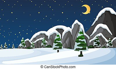 Scene with snow on the field at night time