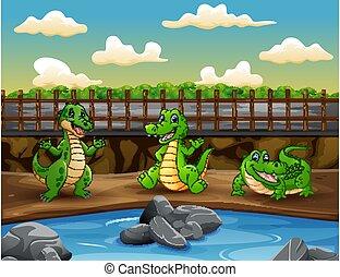 Scene with three crocodiles in the zoo illustration