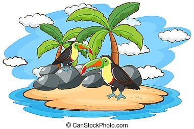 Scene with two toucan birds on island