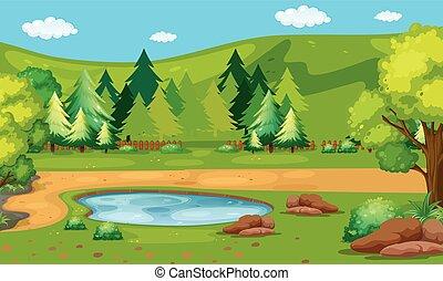 Scene with waterhole in the park