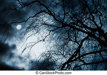 sceneri, scary, fulde, skyer, træer, måne, nøgne, mørke