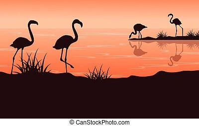 Scenery at sunset with flamingo silhouettes