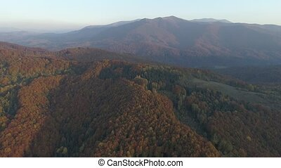 scenery., herfst, berg, carpathians, vliegen, europe., op, bos, mooi