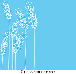 Scenery of a banner of cones of wheat