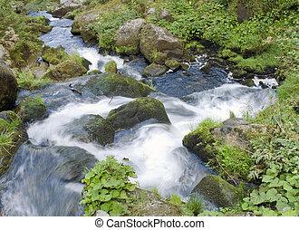 detail of the Triberg Waterfalls