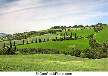 Scenery Val d'Orcia Tuscany