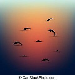 scenery., vector., minimalistic, dauphins, seascape., coucher soleil, sur, eau