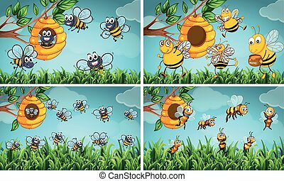Scenes with bees and beehive
