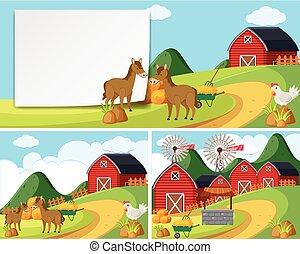 Scenes with horses in farmyard