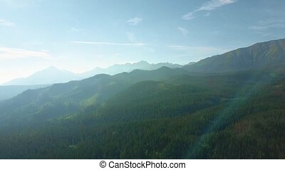 Scenic aerial shot of the Tatra mountains in summer