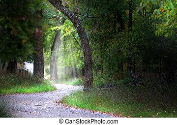 Scenic alley
