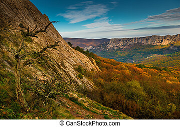 Scenic autumn landscape on a sunny day in the mountains