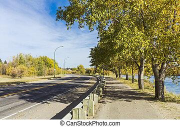 Scenic Autumn Path