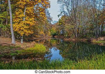 Scenic Autumn Pond - A wetland pond in Allaire State Park in...