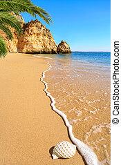 Scenic beach in warm sunlight