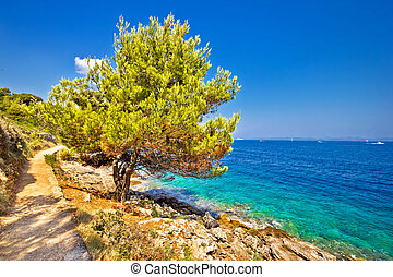 Scenic coast of Dugi otok island in Croatia