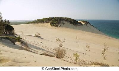 Scenic Coastal Sand Dune, Qld Island, Australia