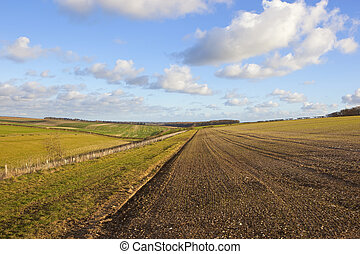scenic cultivated fields