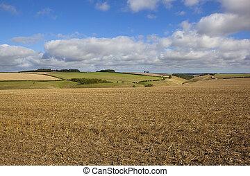 scenic cultivated landscape