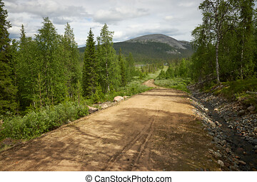 Scenic gravel road through the forest in Lapland