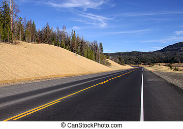 Scenic road through Yellowstone national park in Wyoming