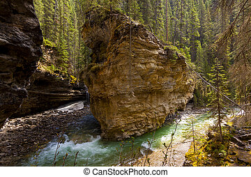 Scenic Johnston Canyon and Waterfalls in Banff NP