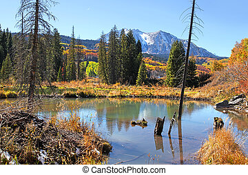 Scenic lake at Kebler pass  in Colorado during autumn time