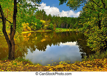 Scenic lake in the autumn forest under cloudy sky