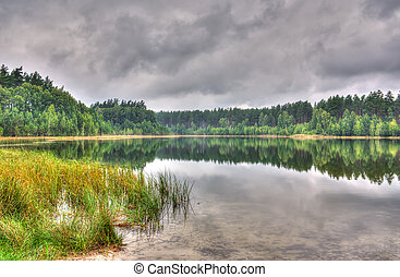 Scenic Lake of the Woods