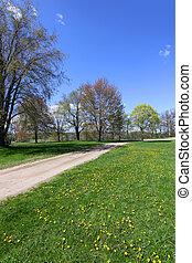 Scenic landscape in spring time