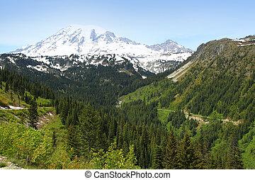 Scenic landscape of Mount Rainier national park