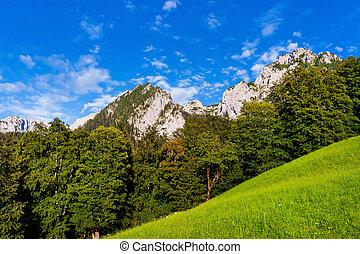 Scenic landscape with Alps in Nationalpark Berchtesgadener Land