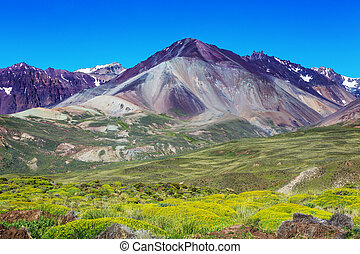 Northern Argentina - Scenic landscapes of Northern...
