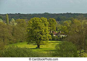 Scenic lush, rural landscape in Surrey, England - Scenic...